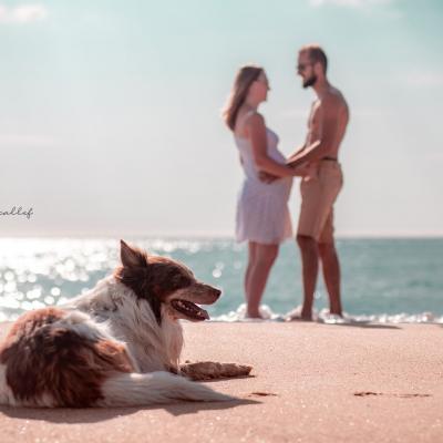 Photographe de grossesse plage de seignosse
