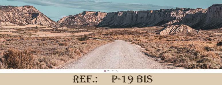 P 19 bis