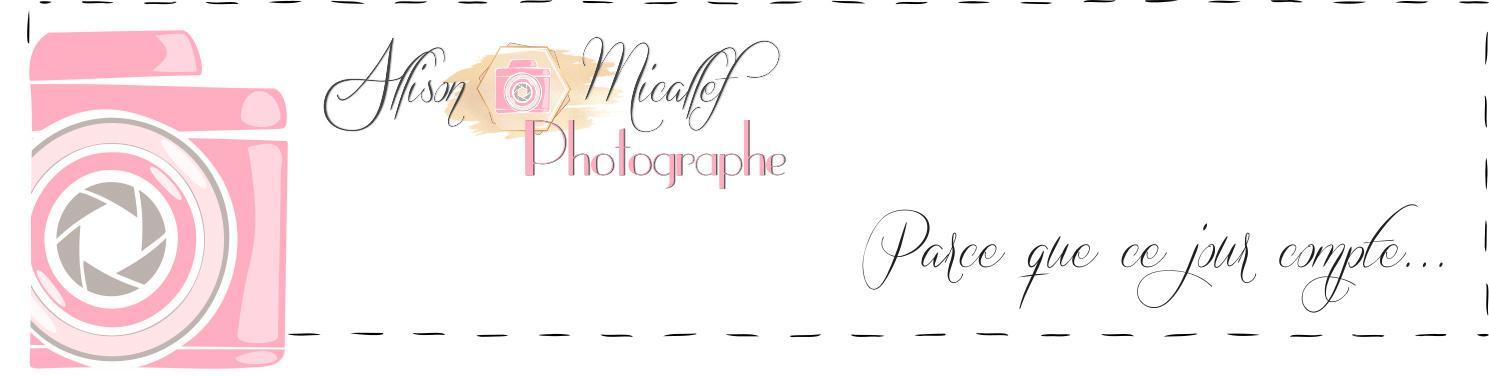 Photographe mariage dax 1